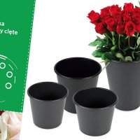 Buckets for cut flowers, capacity from 2 l to 13 l