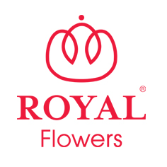 royal_flowers.jpg