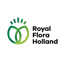 royalfloraholland.png